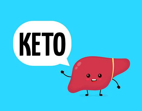 Влияние кето диеты на печень