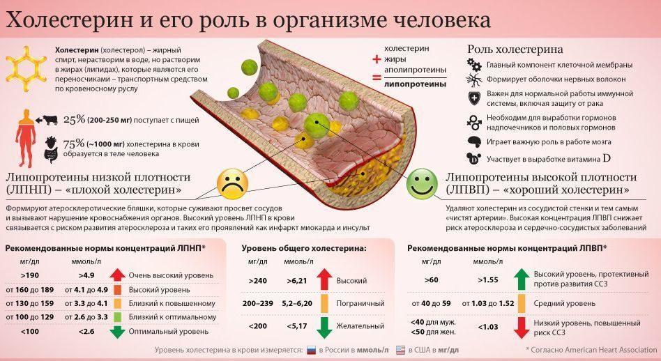 холестерин и кето диета