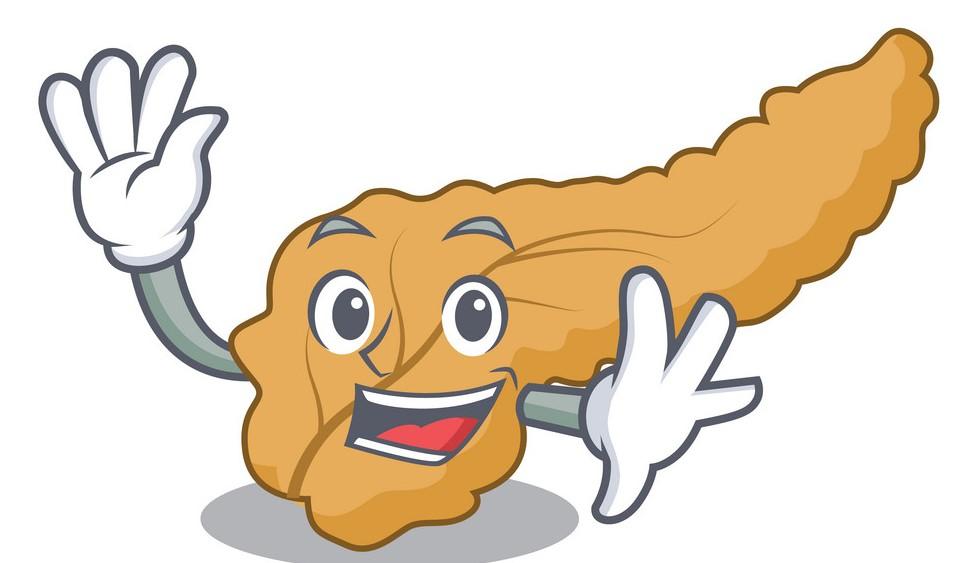 кето диета и поджелудочная железа